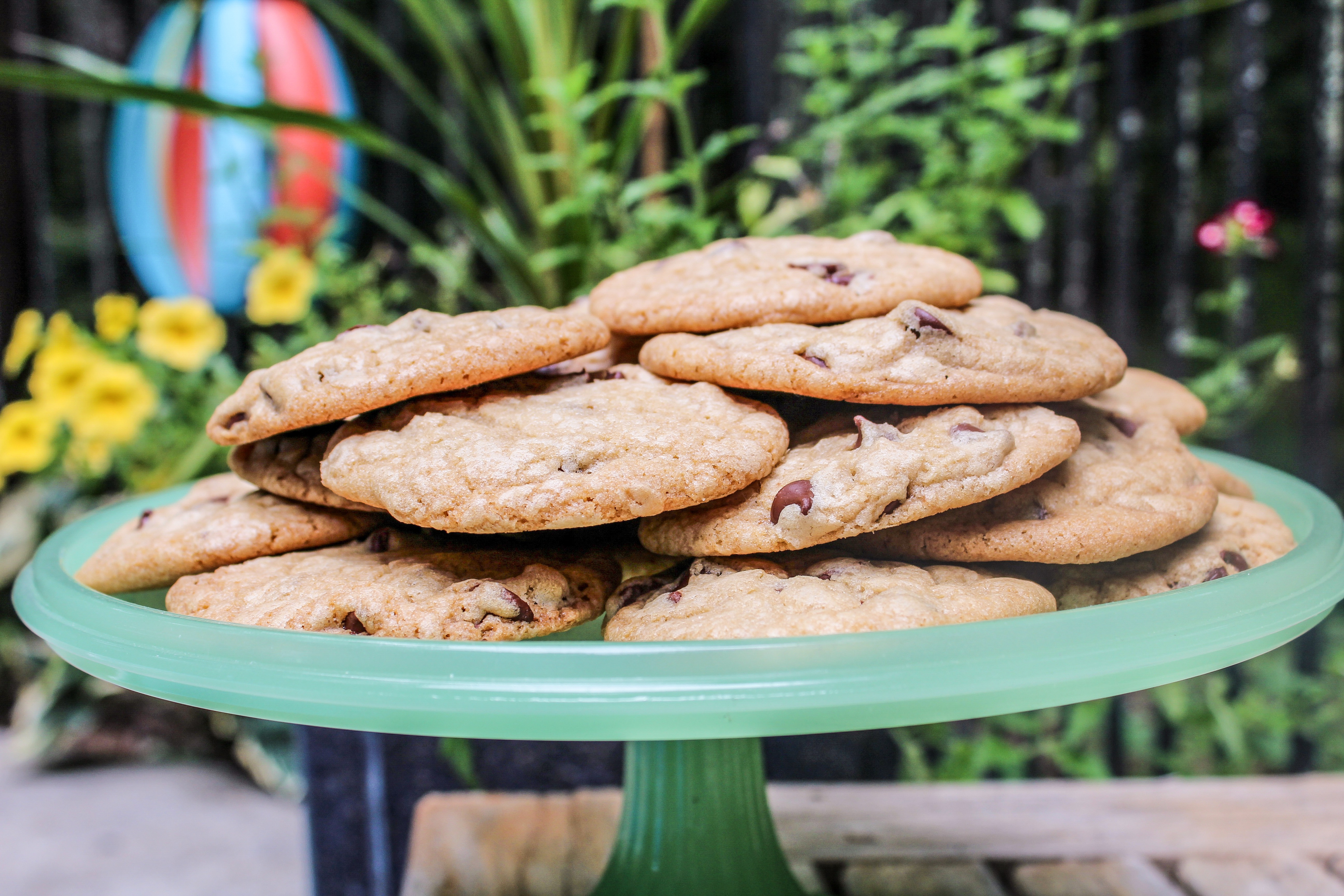 Chocolate Chip Cookie Oh How We Love You Brooklyn To The Catskills